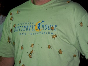 Retro Butterfly House T-shirt (Womens)