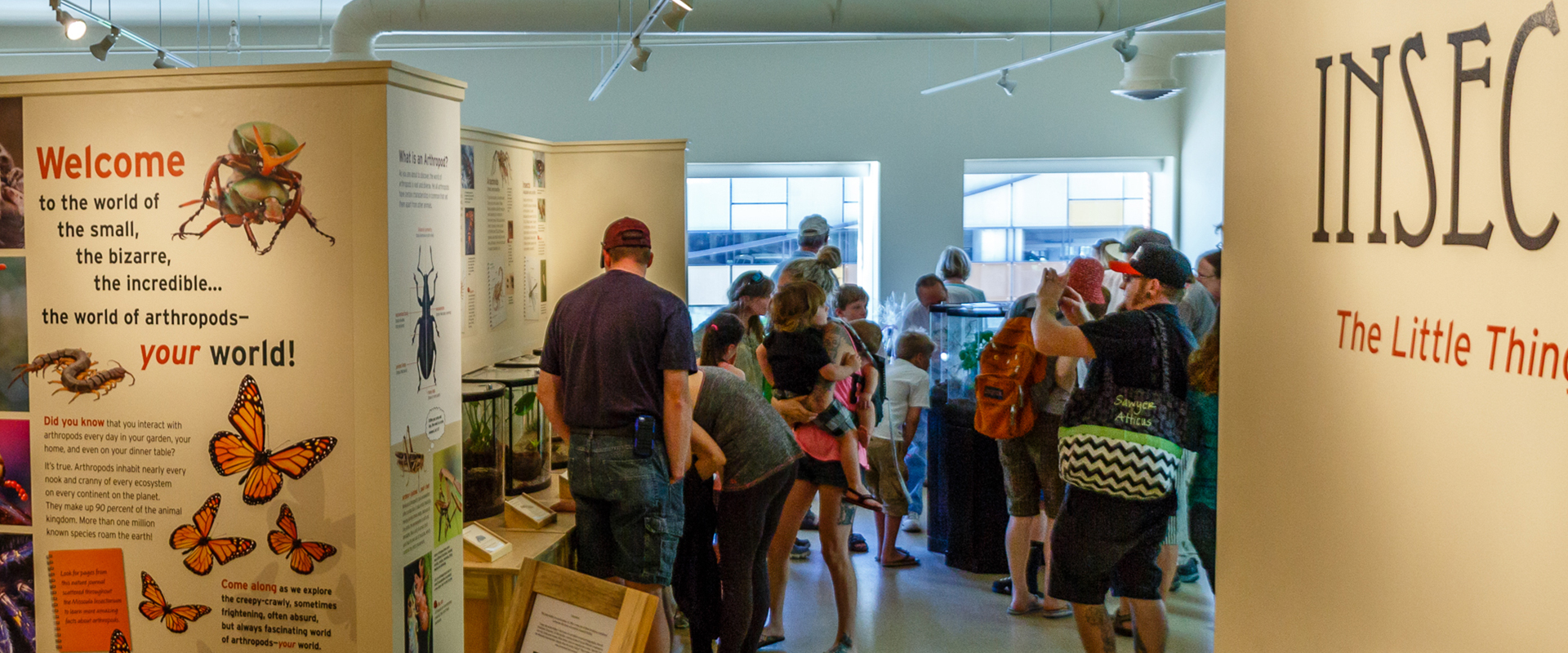 missoula insectarium - get involved-donate, volunteer, share information