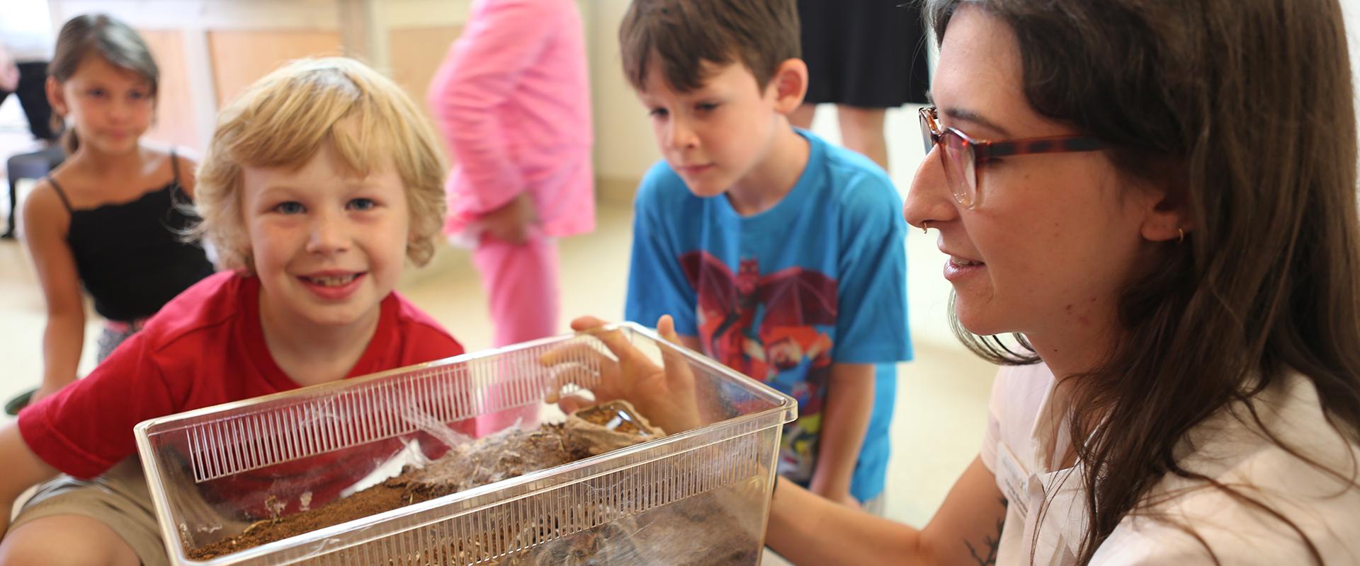 tarantula feedings - missoula insectarium